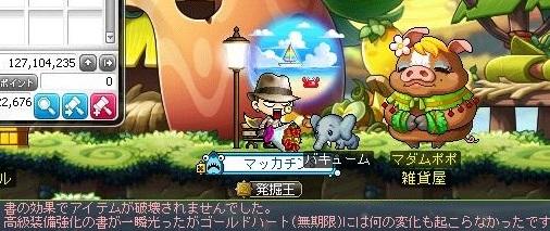 Maple16545a.jpg