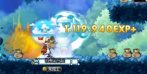 Maple16566a.jpg