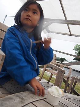 amamiooshima433.jpg