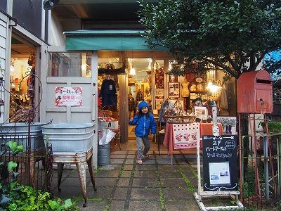 amamiooshima436.jpg