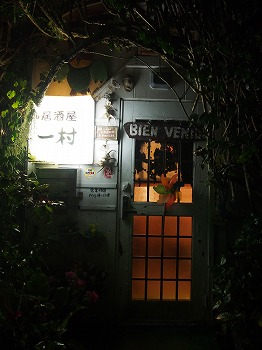 amamiooshima474.jpg