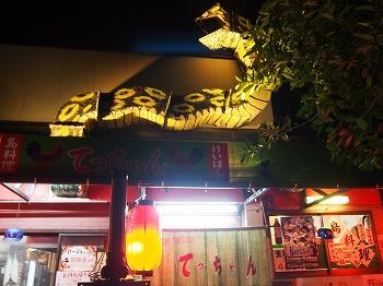 amamiooshima516.jpg