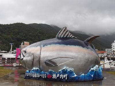amamiooshima607.jpg