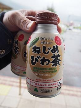 amamiooshima609.jpg