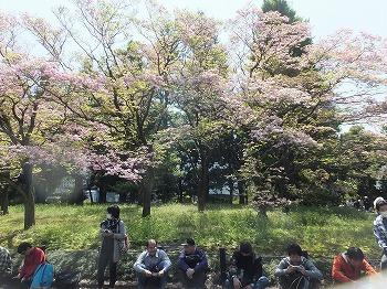 chiyodaku185.jpg