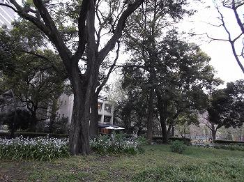 chiyodaku195.jpg