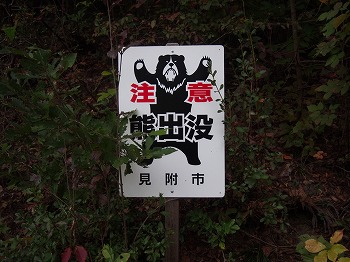 mitsuke145.jpg