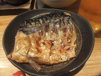 shinjuku-new-uobaka7.jpg