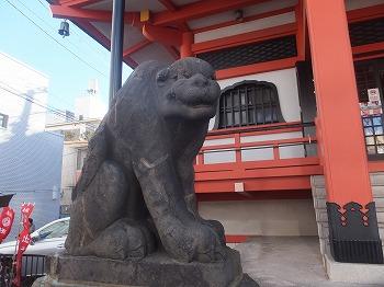 shinjuku-street219.jpg