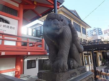 shinjuku-street220.jpg