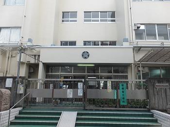 shinjuku-street223.jpg