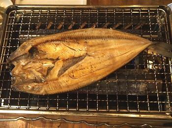 shinjuku-torobako8.jpg