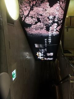 shinjuku-yururiya1.jpg