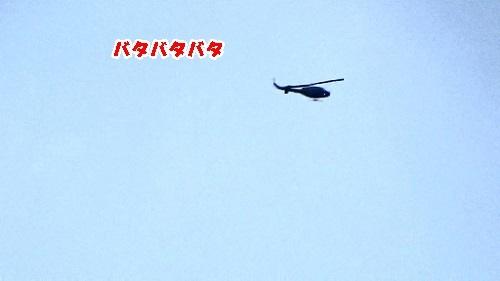 sMAH01148(2)