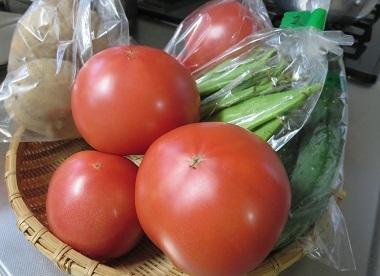 tomato2017 6