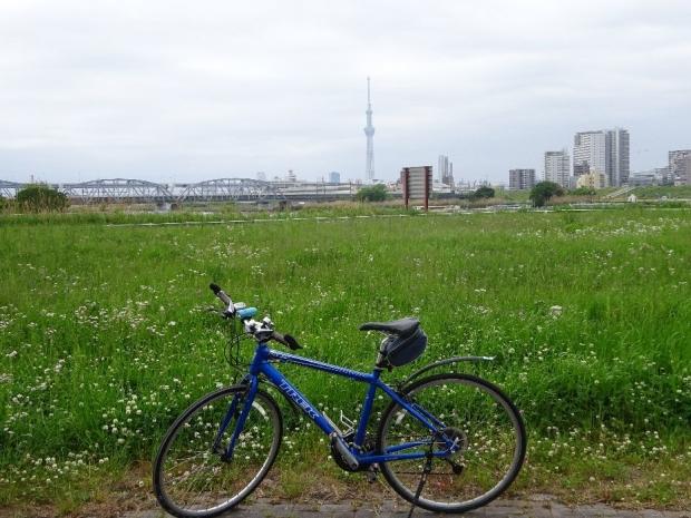 サイクリング荒川2017-5 (3)