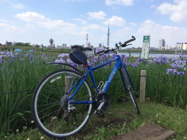 サイクリング5-28 (9)