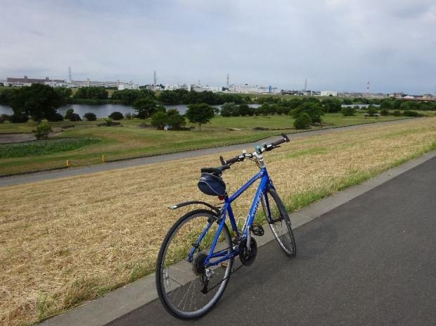 サイクリング@荒川河川敷6-11 (2)