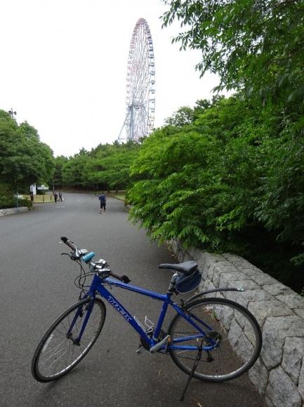 サイクリング@荒川河川敷6-11 (5)