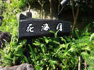 河津温泉ツアー (6)