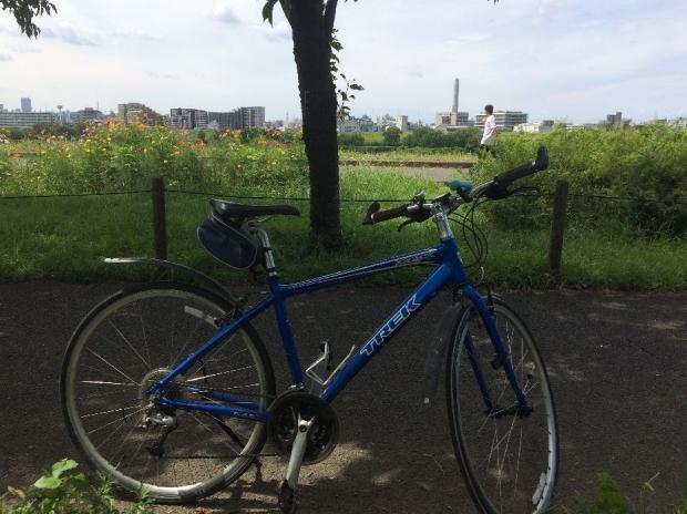 サイクリング9-3 (5)