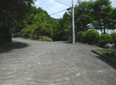 201706_Shiranuta_07.jpg