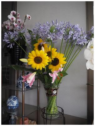 アガバンサスの花1