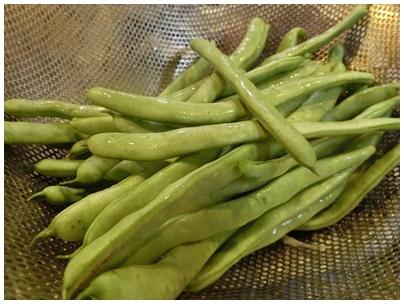 いんげん豆1