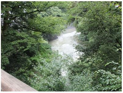 こうろぎ橋6