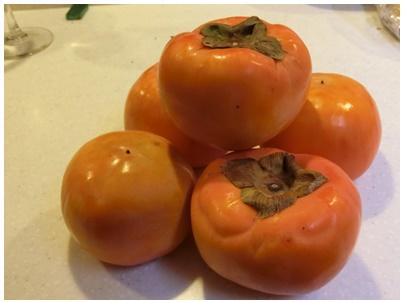 綾川の富有柿1