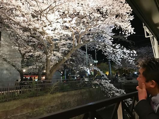 18夜桜でお花見_