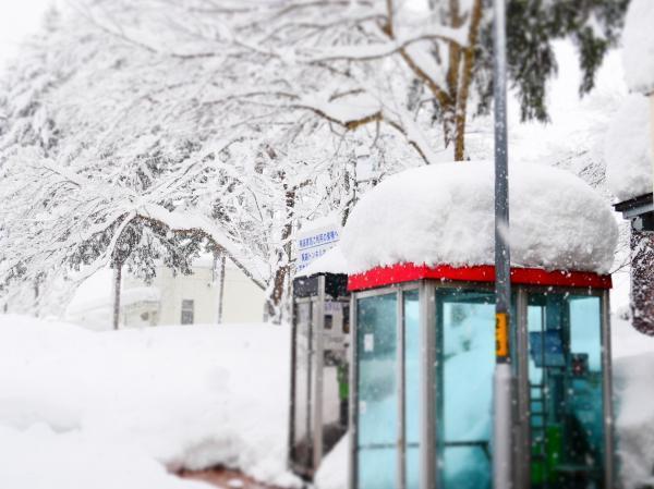 雪の公衆電話