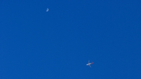 Fly Pass under the Moon