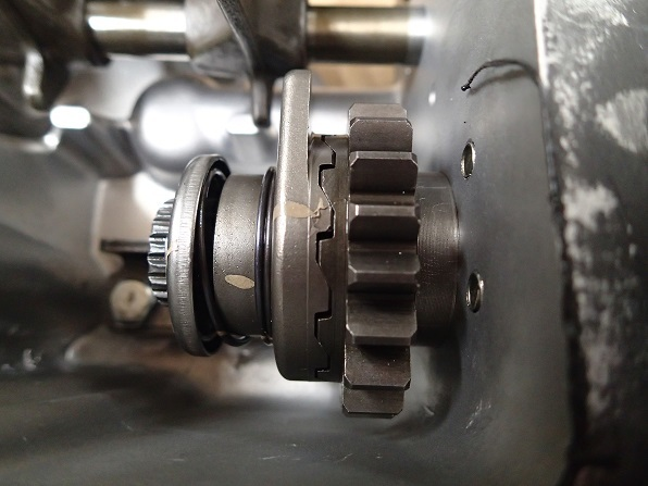 P8042037.jpg