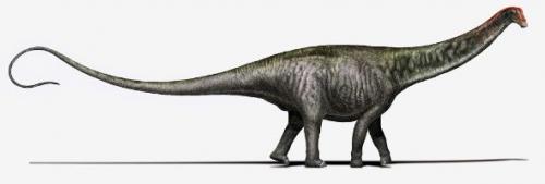 sk_brontosaurus_02.jpg
