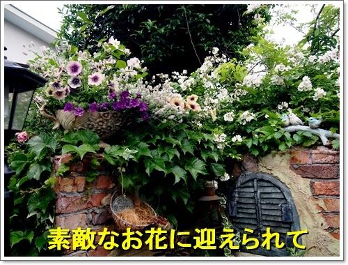 20170514_003.jpg