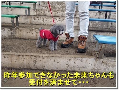 20170610_176.jpg