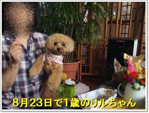 20170806_033.jpg