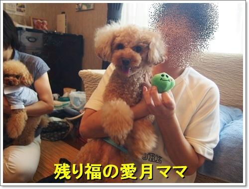 20170806_196.jpg