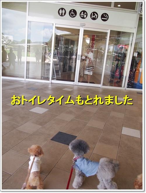 20170902_014.jpg