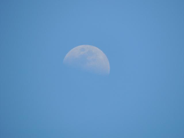 N9378昼間の月