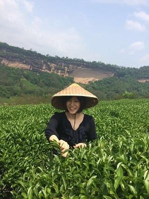 武夷山 製茶