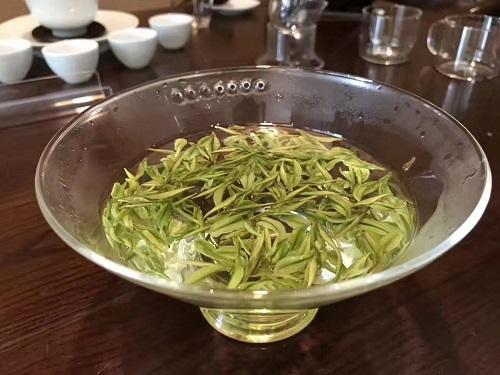 緑茶新茶器2