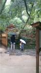 八重垣神社01