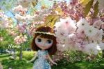 clover1-18.jpg
