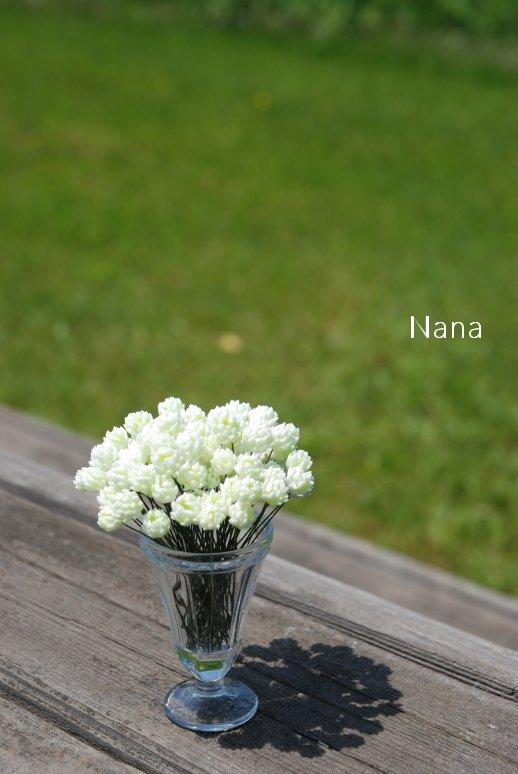 clover1-28.jpg