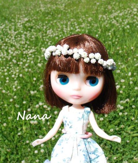 clover1-39.jpg