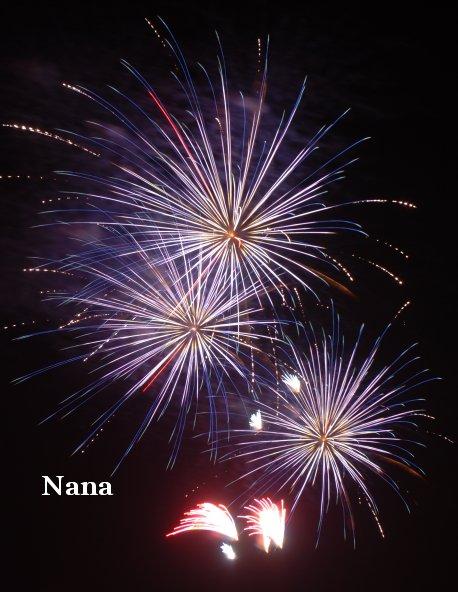 fireworks1-2_20170815204430efc.jpg