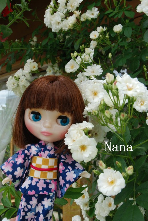 rosegarden1-11.jpg