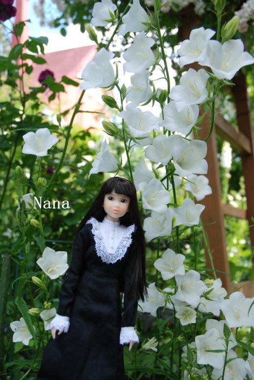 rosegarden1-14.jpg